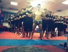 天津泰拳 自由搏击 街头格斗 实战女子防身术 少儿搏击培训