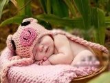 2013摄影小猪护耳 婴儿童手工帽 宝宝
