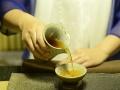 茶语禅心茶艺培训中心常年招生