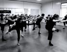 少儿舞蹈 舞蹈家教 舞蹈一对一 舞蹈艺考 全国师资培训