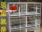 济南炵炎出售各种狗笼 猫笼 围栏 折叠笼 双层笼繁育笼宠物笼