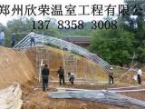 郑州欣荣钢架建设几字钢大棚骨架建造报价