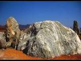 忻州奇石值几百万到哪里交易