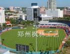 郑州厂家直销人工草坪仿真草坪足球场专用草坪幼儿园彩色草坪