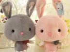 蓝白玩偶毛绒玩具公仔花结宝宝兔美人兔长耳兔情人节生日礼物