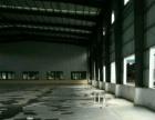 出租新会睦州独门独院标准钢结构厂房3860平方
