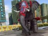 大型庆典道具黄金吉祥狮出租金钱豹机械大象出租收服务