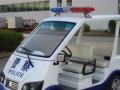 东之尼电动观光车汽车用品1-5万元