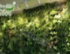 植物墙,植物墙生产厂家,室内景观植物墙