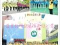 湛江专业幼儿篮球培训——蓝鲨篮球俱乐部