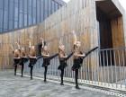 长沙少儿拉丁舞培训班 孩子学舞蹈几岁合适 单色舞蹈免费试课