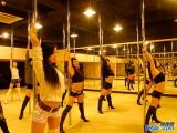 鄭州舞蹈培訓班 鄭州舞蹈培訓學校 鄭州學舞蹈 皇后舞蹈