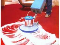 南京专业公司地毯清洗酒店清洗地毯灭鼠灭蟑螂灭虫公司