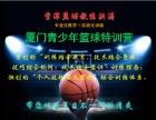 资深篮球教练洪涛 暑期空降美丽鹭岛