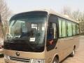 天津大客车、19--59座,承接班车,旅游会议用车
