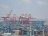 上海报关商检国际拼箱海运脱脂棉棉胎(图)
