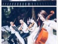 非中介 大小提琴乐队演奏弦乐四重奏婚庆演奏仪式节目