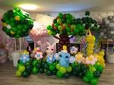 昆明花语花香气球装饰,气球布场,气球策划,气球主题婚礼