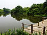 西溪湿地一日游-0571-81581979/浙江东方海外旅游