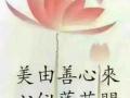 ppt课件制作幻灯片制作