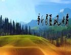 嘉峪关周边游额济纳旗胡杨林张掖旅游