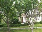 海马公园 家具家电齐全 精装修 有空调 合租房 拎包入住