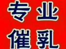 城市广场催奶,桂城催奶,平洲催奶,丹灶催奶,大沥催奶
