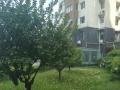 蝶湖湾未来域公寓一间配置齐全1000/月
