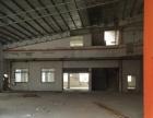 蓬江800方标准厂房 配套齐全 带货梯 交通便利