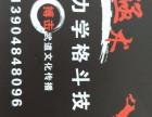 殛术人体力学格斗技 MMA综合格斗 搏击格斗的研究所