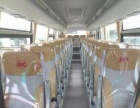 其他客车其他客车-优惠促销