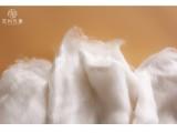 蘇州先蠶 水刺用桑蠶絲短纖38mm 優等品