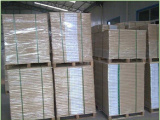 轻涂纸生产商-山东哪里有供销耐用的文化印刷用纸