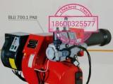 意大利进口低氮燃烧机