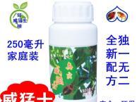 如何防止臭虫,怎么防治臭虫,威猛士臭虫药