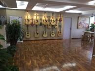 西安凤城四路附近哪里有少儿吉他寒假培训班