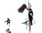 学舞蹈学钢管舞就来赣州初梦华翎舞蹈培训学校 专业仔细