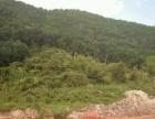 勐腊县勐腊镇补过寨 土地 6003平米