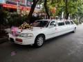 婚车出租 豪华轿车出租 高档婚车价格