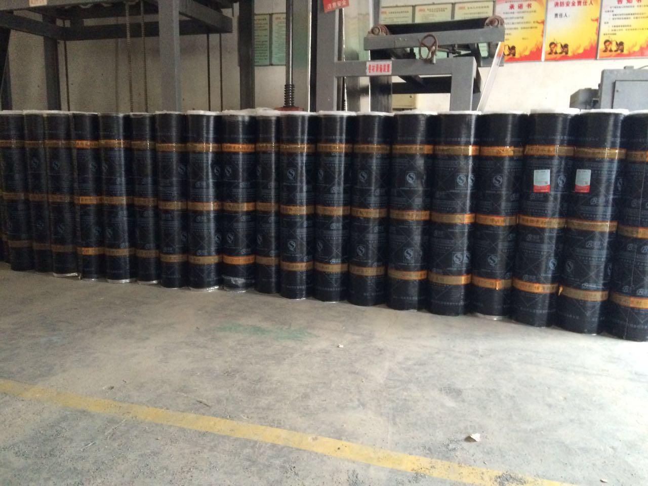 山东哪里有供应热销SBS防水卷材|-10度SBS防水卷材厂家