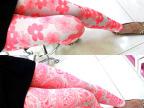 2013新款 网纱植绒彩色荧光夏季九分裤女士打底裤批发薄款打底裤