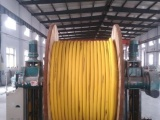 宁夏银川兴乐电线电缆厂