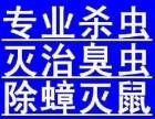 重慶工廠白蟻防治 重慶西餐廳消滅蟑螂 重慶消滅臭蟲