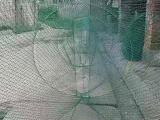 青海省地笼渔网联系方式欢迎随时拨打业务专线咨询