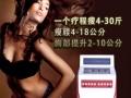 怀化多功能瘦腰美体养生调理仪恒达高端美容仪器品牌