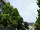 出租蜀山产业园2200平米框架结构厂房