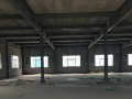 标准化厂房(800――8000平方米)低价出租面积