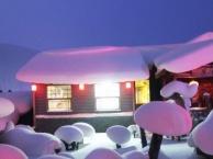 哈尔滨、雪乡、亚布力雪地温泉、欢乐冰雪世界冰雕五日游