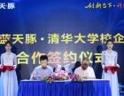 蓝天豚,中国硅藻泥十大品牌,18元/平方起!