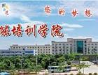 南宁培训:宾馆酒店餐厅服务-宾馆酒店客房服务-茶艺师